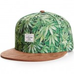 Gorra-Snapback-CAYLER-&-SONS-C&S-2-Tone-Kush-Cap-green-mc-brown-suede-CAY-SS14-41-01-Disaster-Street-wear-01